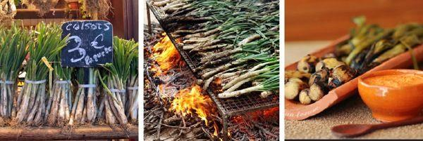 CALÇOTADA (SPAIN) Groups gather to celebrate harvest by drinking lots of Cava and starting a roaring fire to cook Calçots large, mild scallions charred on the