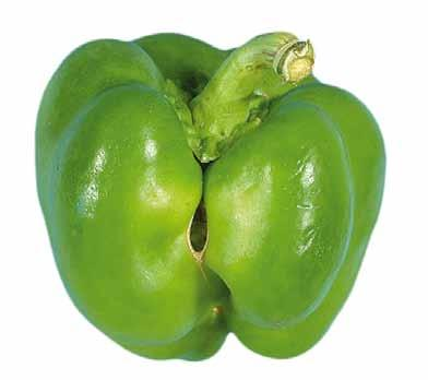 UNECE Explanatory Brochure on the Standard for Sweet Peppers Photo 9 Minimum requirement: intact.