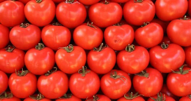 Two Tomato Recipes Greek Tomato Salad 8 medium tomatoes, sliced 1 medium onion, thinly sliced 1 green pepper, chopped (optional) 1 cucumber, chopped 2 tablespoons fresh basil, mint, or parsley,