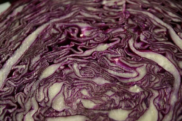 Cabbage Slaw 1 head red cabbage 2 carrots, grated 8 scallions, greens and whites, thinly sliced ¼ cup canola or vegetable oil ¼ cup unseasoned rice vinegar ½ teaspoon kosher salt ¼ teaspoon black