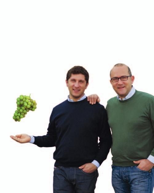 To this end, the partners have been working together first to meet the demand for high-quality table grapes that do not exceed the maximum residue levels established by the European Union, and second
