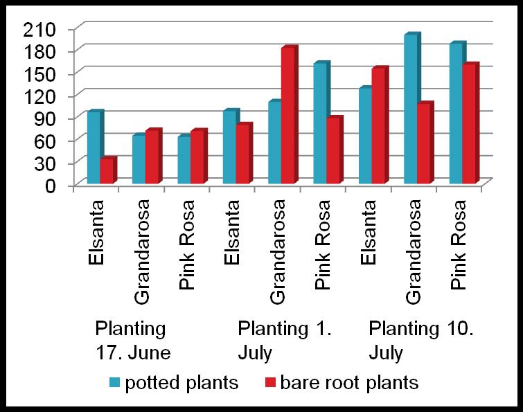 EXP. III: PRODUCTION FOR LATE FRUIT RIPENING BY LATE PLANTING OF FRIGO A PLANTS IN THE OPEN FIELD In 2012 the lowest yield obtained from plants