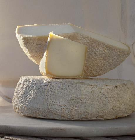 CHEESES REY SILO BLANCO Y ROJO A revived ancient cheese almost lost to history afuegal pitu. First mentions of this cheese come from letters to the Emperor Charlemagne.