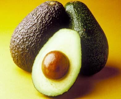 Factors to consider when ripening avocado Mary Lu Arpaia Univ.