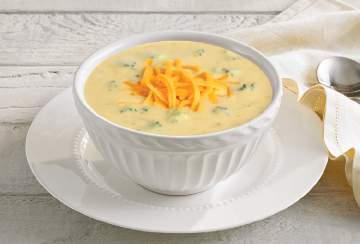 Gourmet Soups Broccoli & Cheese Portion Size: 8