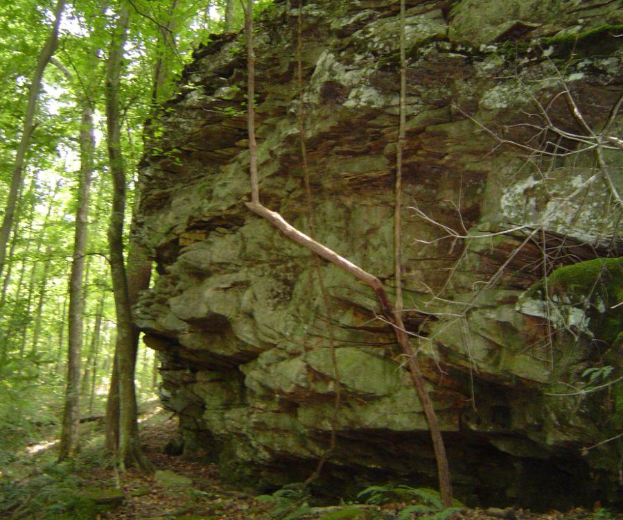 ROCKSHELTERS IN THE RED RIVER GORGE For nearly 12,000 years, people have lived in the Red River Gorge. This beautiful place has everything they need: food, shelter, other resources, and inspiration.