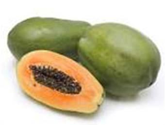 Major Papaya Types in the USA Solo Brookstropical.