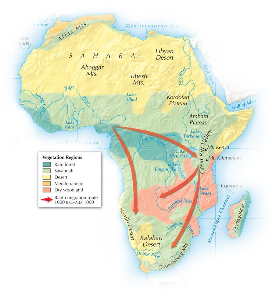 Section 1 African vegetation regions are wide bands across the continent.
