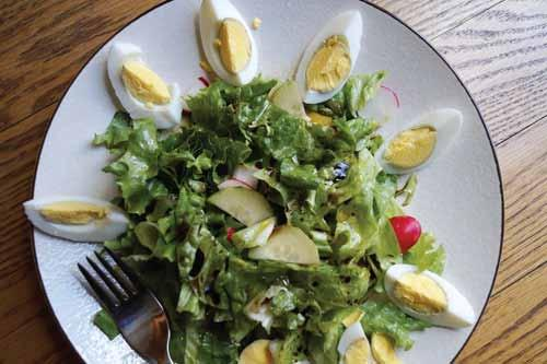 CUCUMBER and LETTUCE SALAD................................................................................................................... Combine in a bowl cucumber, lettuce, green onions, and radishes.