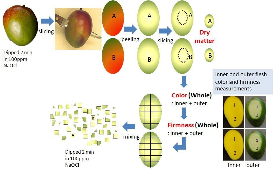 Figure 4. Process for fresh cut mango processing in 10 C (50 F) room. Results and Discussion Figure 5.