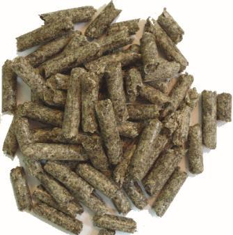 exceeded 145 mln USD Beet pulp pellets (BPP) 1,0 mln