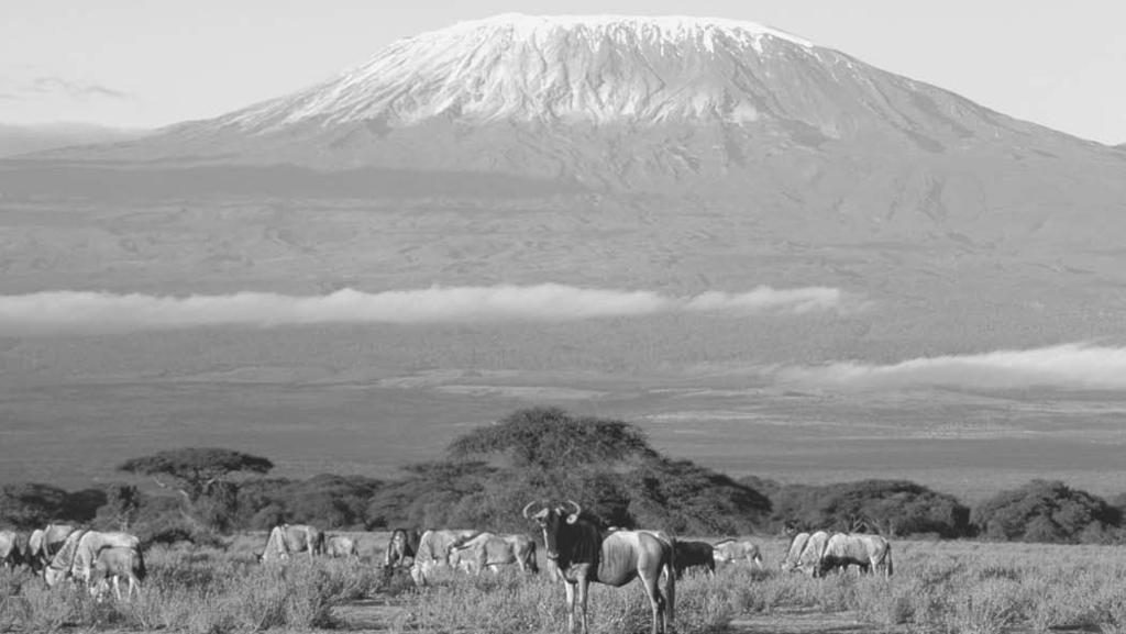 geography 97 Mount Kilimanjaro, a dormant volcano on the Kenya Tanzania border, is one of a series of volcanoes formed at the same time as the Great Rift alley.