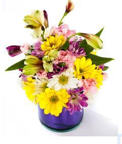 ) Red #714 Yellow #716 64,00 EUR* Pink #715 Tropical Flower Bouquet #705 59,00