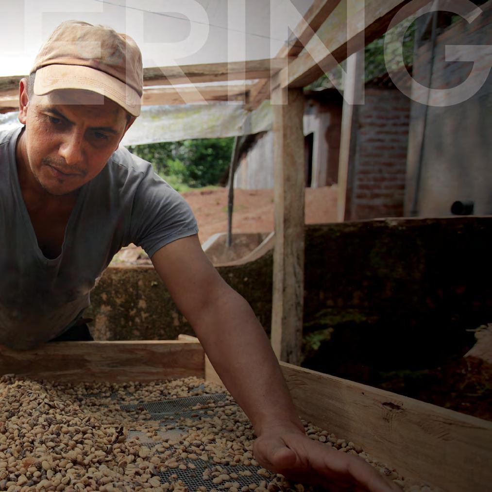 We aim to improve livelihoods in our coffee supply