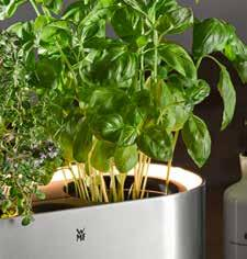 The intelligent watering system keeps herbs fresh for a long time no need to water your plants for a few days.