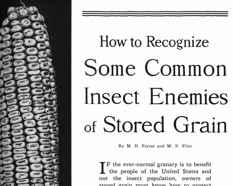 How to Recognize Some Common Insect Enemies of Stored Grain I By M. D. Farrar and W. P.
