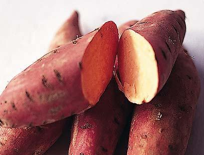 How to Nourish With sweet potatoes Brought to you by Viva Vegetables A Utah State University Extension and Nutrition and Food Sciences Department campaign The goal of the How to Nourish With lesson