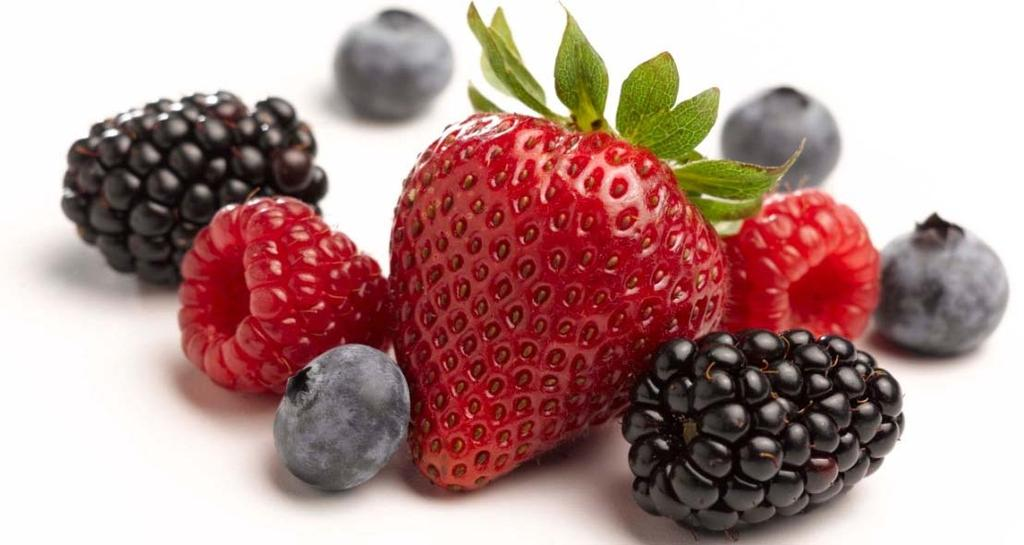 Product Development Services Naturipe can help you with expanding the unique flavors, health benefits and versatility of berries, through innovations in: Culinary Development for foodservice