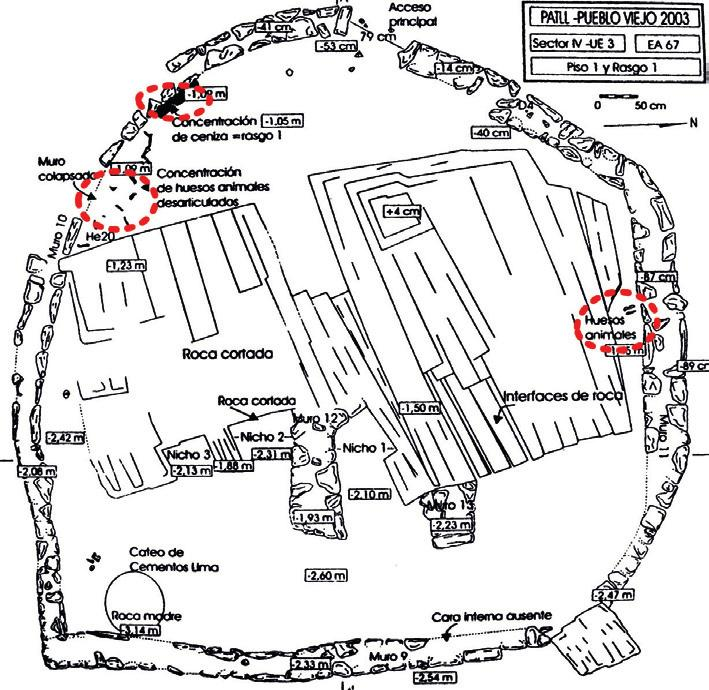 ritual commensality between human and non-human persons Fig. 2 Sketch map of Summit Temple with areas circled in red indicating concentrations of llama bone and ash. Ater Makowski et al.