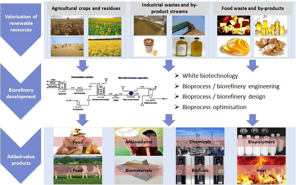MSc direction entitled Food Bioprocesses and Biorefineries Organisation: Department of Food Science and Technology, Agricultural University of Athens Duration: 18 months Language: Greek Website: www.