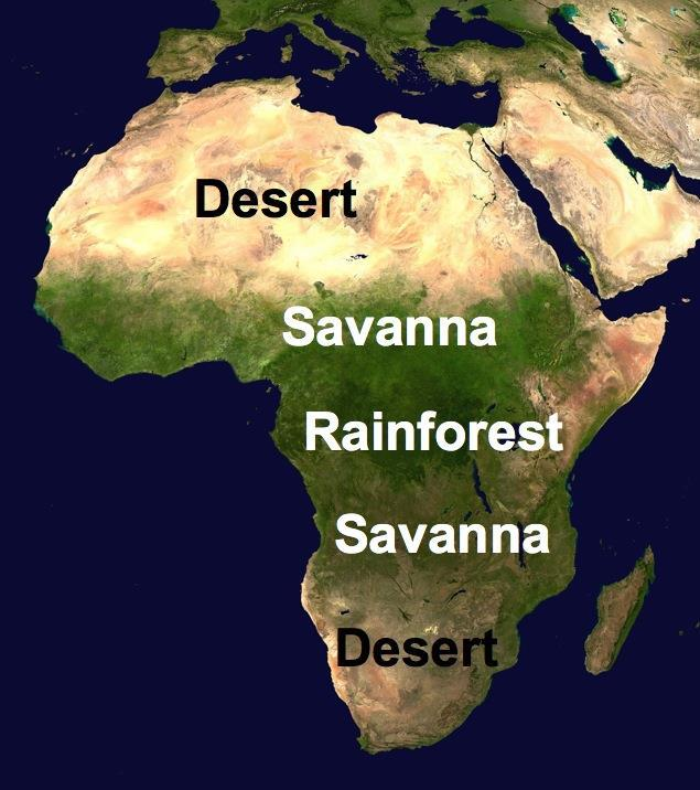 Africa s Four Climate Zones Africa is the second largest continent on earth following Asia.