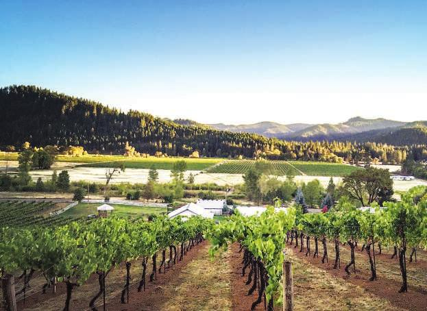 Deer Creek Vineyards is an outstanding business and residential opportunity and includes a fully operational