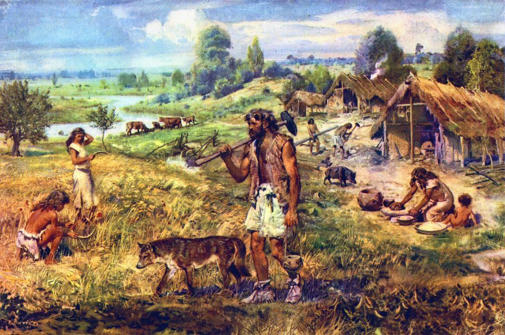 NEOLITHIC OR AGRICULTURAL REVOLUTION Neolithic