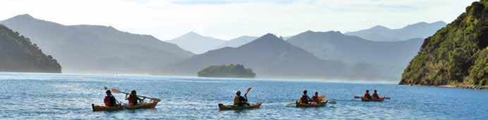 Wilderness Guides Picton Waterfront, Corner of London Quay & Wellington Street T: +64 (0)3 5735432 or Freephone: 0800 266 266 E: info@wildernessguidesnz.