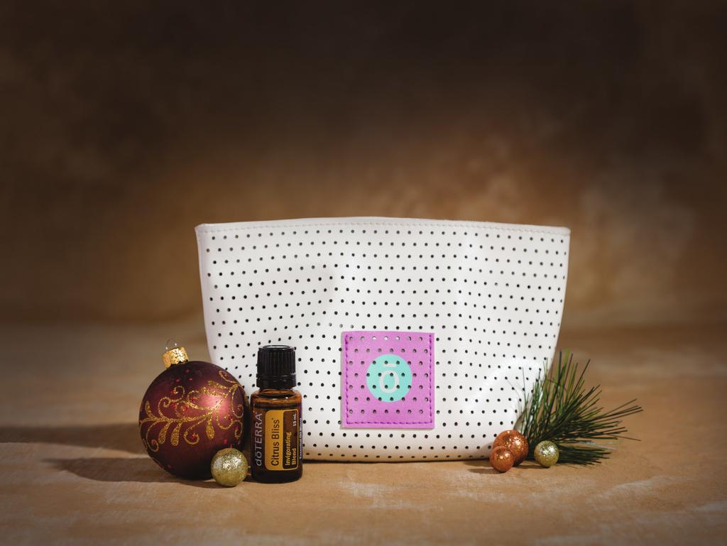 PERFORATED DIFFUSER BAG WITH CITRUS BLISS 60203742 31,75 wholesale 28 PV 28.