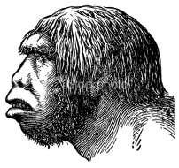 2 Neanderthal People Learned Basic Skills Imagine, if you can, a muscular group of people standing before a cave and looking out over a cold landscape.