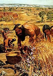 The Neolithic (Agricultural) Revolution Humans began producing food