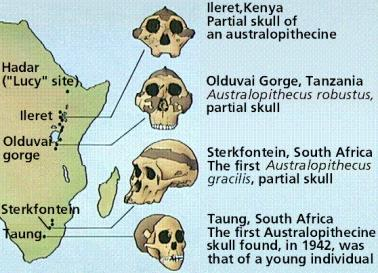 Prehistoric Finds in Africa