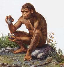 and knowledge available Began making more specialized tools The use of stone tools led to the term Stone Age