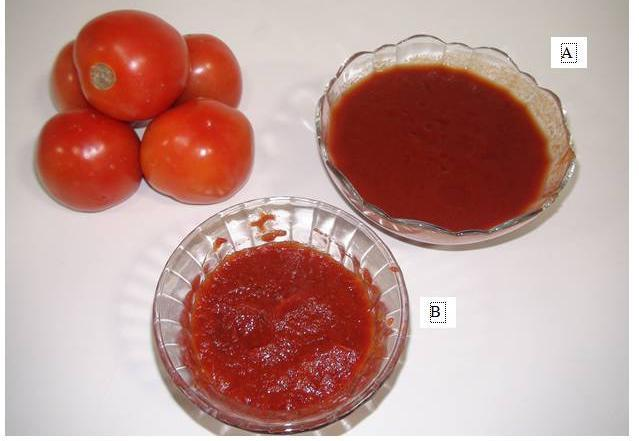 WWW.AGRIMOON.COM Fig. 22.2 Tomato puree (A) and Tomato paste (B) Tomato juice or pulp is strained or filtered to remove portions of skin, seeds and large coarse pieces to get uniform juice or pulp.