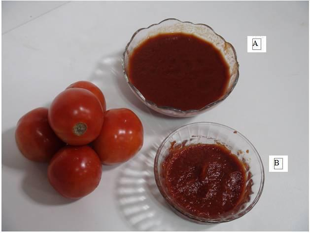 WWW.AGRIMOON.COM 22.4.3 Juice standardization Freshly squeezed juice is a thin, watery fluid and its specific gravity varies with the kind of tomato and duration of boiling. Its T.S.