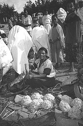 182 LOST CROPS OF AFRICA A woman selling kocho at a local market. Note that enset leaves are used like plates or mats on which to display the product.