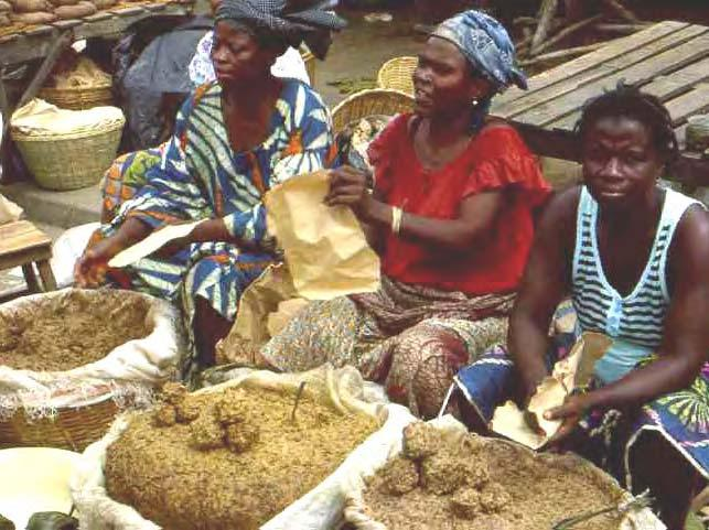 212 LOST CROPS OF AFRICA Dantokpa market, Cotonou, Benin. Mustard made from seeds of the savanna tree commonly called locust in English is essential for making nutritious soup.