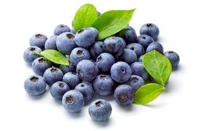 Powdered blueberries give the honey an unexpected dark purple color, a slightly tart and mellow taste which gently softens the sweetness of honey.