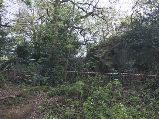 This next photos shows the rocky outcrop And as you can see young trees, old trees and ground cover. It has been cordoned off by the owners of the land.
