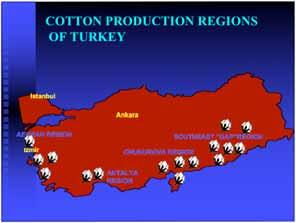 COTTON PRODUCTION REGIONS OF TURKEY COTTON IN TURKEY Istanbul AEGEAN REGION Izmir Ankara CHUKUROVA REGION SOUTHEAST GAP REGION ANTALYA REGION Cotton Production and Yield (*) estimate, (**)