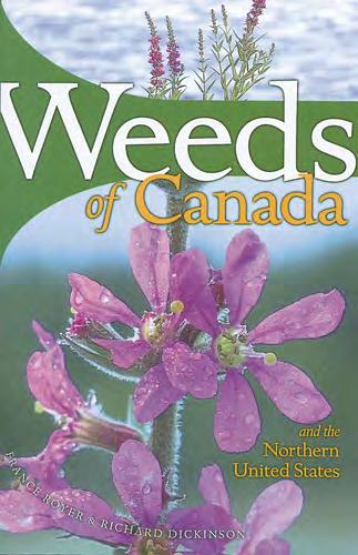 Weed Websites Alberta Invasive Plant Council http://www.invasiveplants.ab.ca/index.html Weed Wise gardening in Alberta http://www.invasiveplants.ab.ca/downloads/27x9%20wwbrochure.