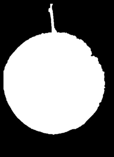 Based Attract and Kill System for SWD Color important; black and red routinely outperformed other colors. A spherical shape: size greater than 2.