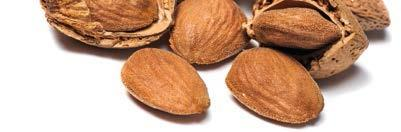 COUNTRY ESTIMATED WORLD ALMOND CONSUMPTION (Kernel Basis) 2012 2013 2014 2015 2016 USA 261,306 0.91 1.81 282,672 0.96 1.91 278,435 0.95 1.91 257,919 0.88 1.76 315,736 0.98 1.96 India 94,536 0.08 0.