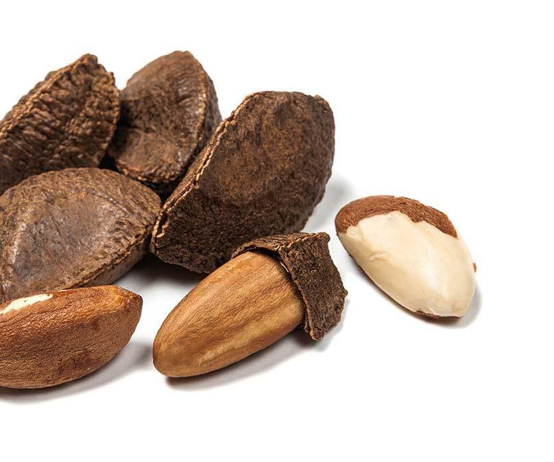 BRAZIL NUTS BRAZIL NUT IMPORTS / Shelled (Metric Tons) COUNTRY 2006 2007 2008 2009 2010 2011 2012 2013 2014 2015 2016 Growth 2006-2016 UK* 7,876 9,034 7,548 7,123 6,956 6,836 5,382 6,203 6,680 7,361