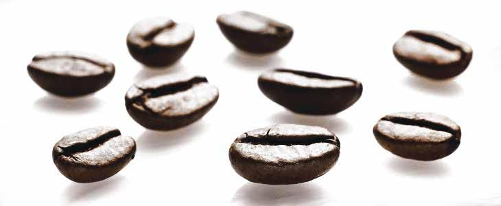 Methodological note The Sustainable Value Report of illycaffè is presently at its fourth edition: published for the first time in 2012 and regularly issued on annual base, the report is intended to