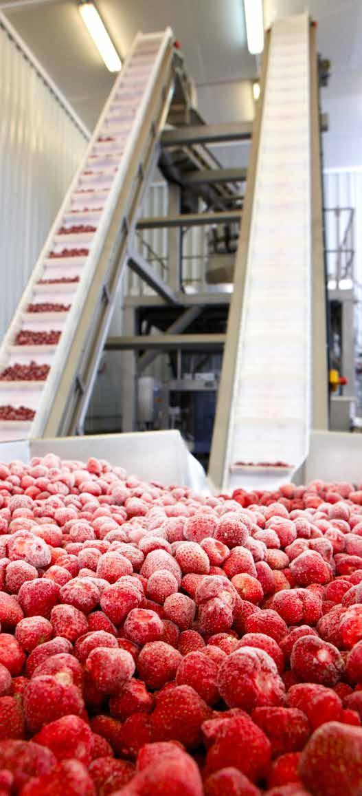 Since 1996, d Poland has been a largescale supplier of frozen fruits and