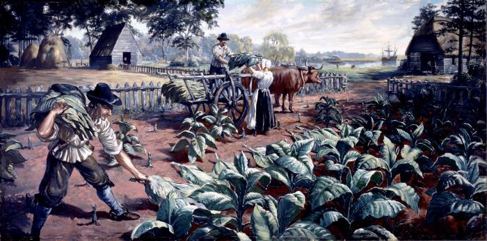 1611-1614: Tobacco Cultivation at Jamestown