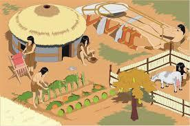 - They MAKE FIRE to cook food and get warmth and protection. - They made STONE TOOLS. - They used them to cut, hunt and to fish.