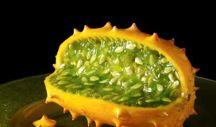 HORNED MELON 91 A spiky orange oddity crammed with white seeds and vivid green jelly, the horned melon has gone international in recent decades, with several nations shipping it around the world.