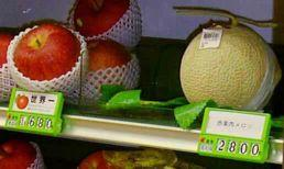 136 LOST CROPS OF AFRICA Melons are high-value products in some parts of the world. Shown here is a small specimen in a Nakatsugawa, Japan supermarket, priced (in 2006) at US$25, next to a $15 apple.